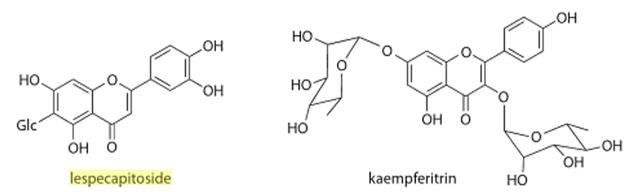 Chemical Structure Lespedeza